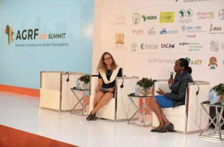 Agriculture : les acteurs du secteur agricole réfléchissent sur les systèmes alimentaires durables et résilients pour l'Afrique